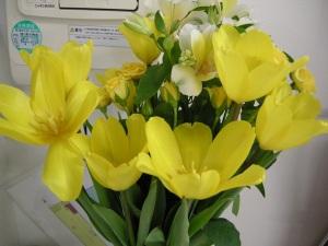 まるよし事務所のお花